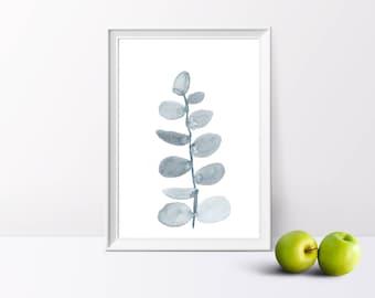 Eucalyptus, Watercolour Illustration, A4/A5 Print