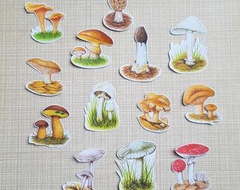 Mushroom stickerset 2