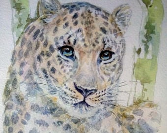 Beautiful Amur Leopard, Russia/ China border, Big cats, original artwork, wall art, free postage, animal lovers, fine art, wall art, decor