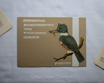 Handmade Blank Greeting Card (Folded A6) - Belted Kingfisher - Golden Guide to BIRDS