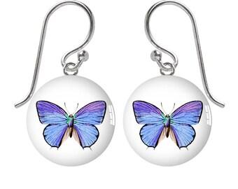 Meadow Blue Butterfly Sterling Silver Meniscus Earrings