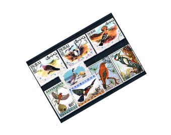 Large Vintage Bird Postage Stamps | Bird Stamps - tern, dove, woodpecker etc | old postal stamps - stamp collection, craft, upcycle, collage