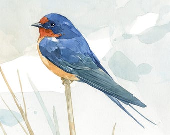 Barn swallow watercolor art print, bird painting, 5x7