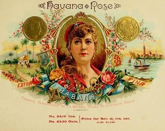 antique victorian cigar label illustration havana roses pinup digital download