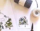 Greenhouse cards - Botanical cards, tropical garden, plants, botanical, cactus, succulents illustration, set of 4 illustrated cards