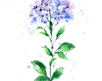 Watercolor Flower Print - Lavender Hydrangea Flowers