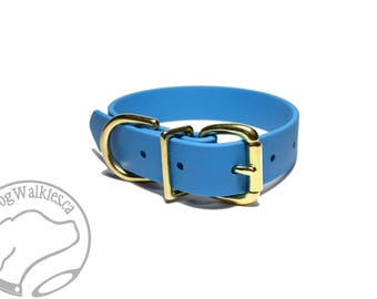 "NEW - Caribbean Blue Biothane Dog Collar / 1"" (25mm) Wide / Leather Look and Feel / Stainless Steel or Solid Brass Hardware / Custom Collar"