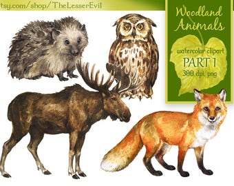 Woodland Animals Clipart, Digital Watercolor Illustration, Forest animal Clip Art, Hand-painted Realistic Stock Illustration, Commercial use