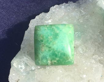 Chrysoprase Square Cabochon approx. 15.5 mm x 16 mm