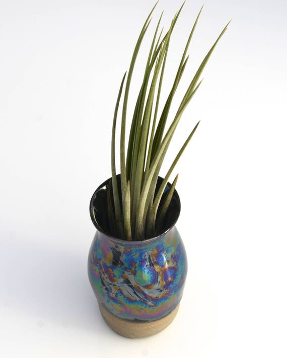 Dark rainbow airplant vase