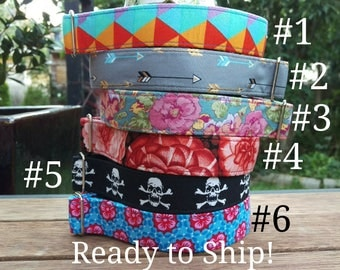 """READY TO SHIP! Tag/House Collars - 1"""" - Whippet 10-15"""""""