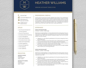 modern and professional resume template for word modern cv template professional cv resume