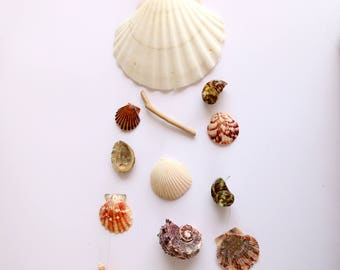Sea Shell Wind Chime Etsy