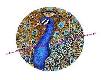 25 mm - nice Ref 4 Peacock glass cabochon
