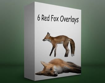6 Red Fox Overlays