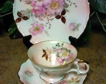 Bavaria Schumann Teacup  Wild Rose TeacupTrio by Bavaria Schumann Arzberg Germany Teacup Trio