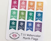 T111 || 12 Watercolor Month Flag Stickers