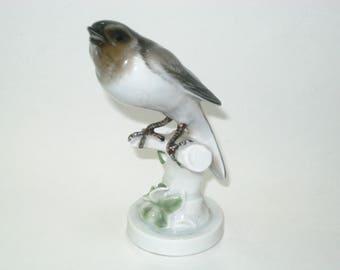 Rosenthal Selb Germany Porcelain Bird Figurine #871 Meisel 1936 MINT