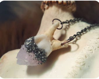 Tooth necklace ~ rose quartz crystal and tooth necklace ~ real animal teeth, pink crystal and pyrite, bone necklace