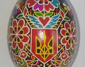 Traditional Ukrainian Easter egg. This egg. Handmade. Pysanky Konoval