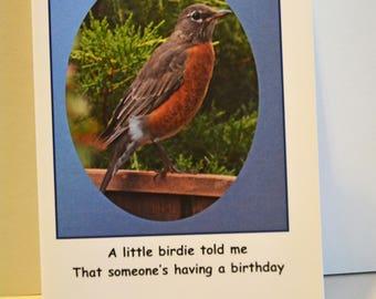 little birdie birthday