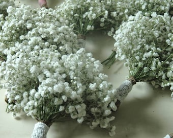 8 Simple Baby's Breath Bouquet  8 Matching Boutenirs Choose Wrap Bridal Bouquet Dried Baby's Breath Bouquet Elegant Wedding Package