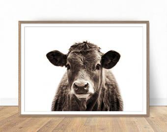 Cow Print, Farm Animal Prints, Printable Art, Farmhouse Decor, Animal Photography, Printable Wall Art, Digital Art, Rustic Decor, Animal Art