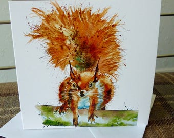 Red Squirrel, a fine digital print from a watercolour by Pauline Merritt