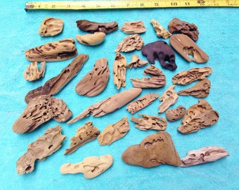Worm Wood Driftwood (Lot 128) 31 Pieces  Beach Comber Set Craft Nautical Decor Weddings