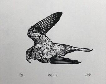 Kestrel linocut print | Handprinted, limited edition | Bird linoprint