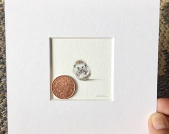 Hedgehog I, original miniature watercolour painting 2.54cm x 2.54 cm