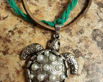 Bohemian turtle