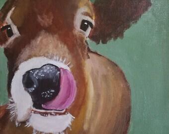 Funny Farm Cow Art- Acrylic Painting - Clearance sale