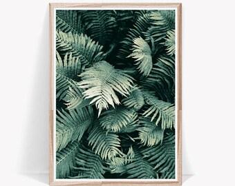 Fern Print,Botanical Print,Botanical Art,Prints,Botanical Prints,Botanical,Plant Prints,Fern,Nature Print,Botanical Poster,Large Wall Art
