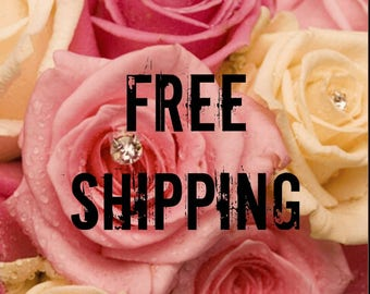 FREE SHIPPING Do Not Purchase