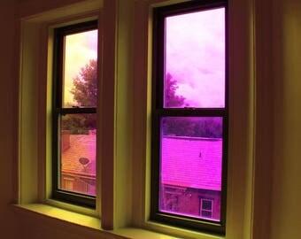 Neon Window Digital Photography