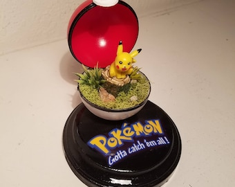 Pokemon terrarium pikachu mini pokeball with base