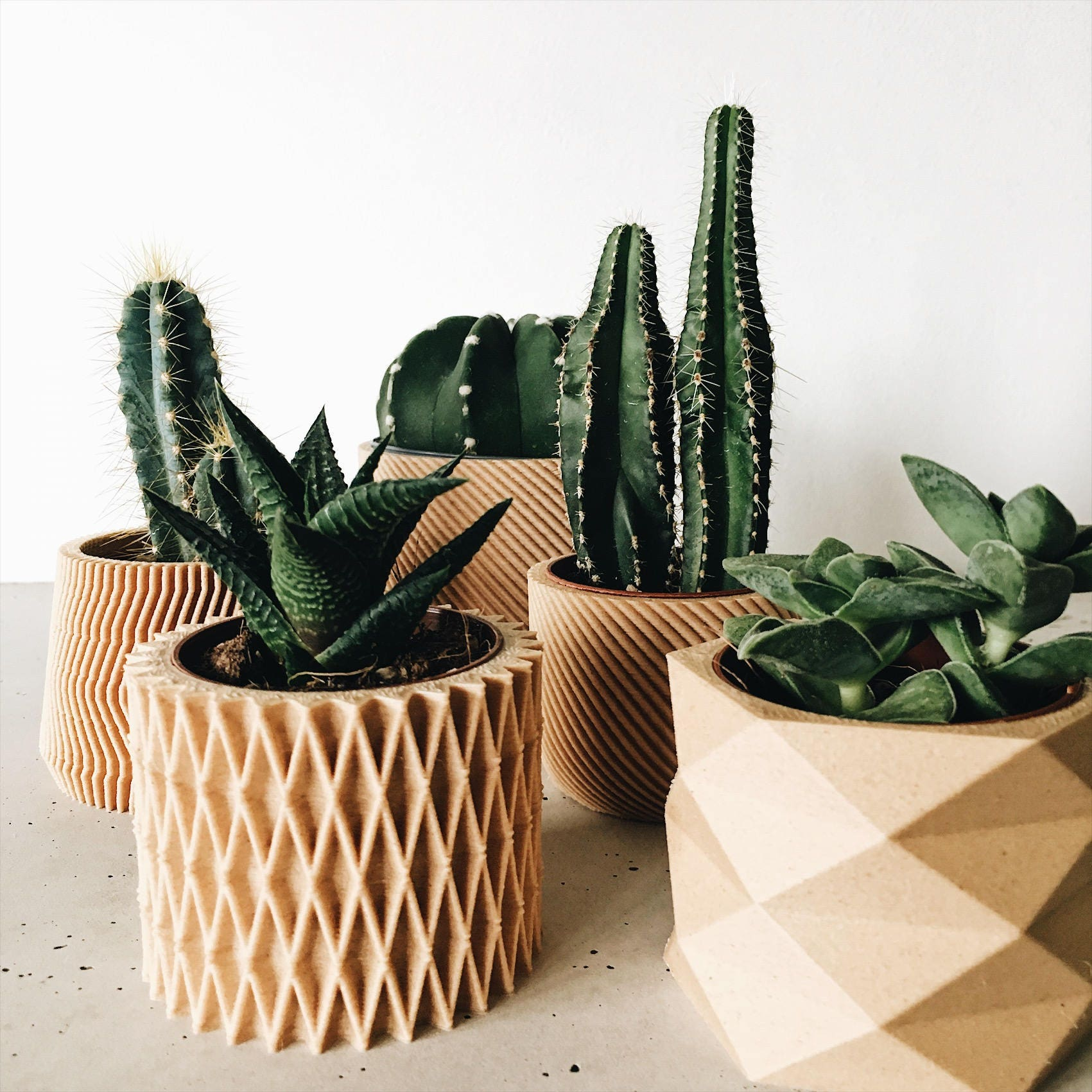 Set of 3 small geometric pots planters design hygge for Wooden cactus planter