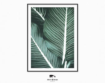 Exotic Palm Leaves Print, Botanical Art, Tropical Plants Poster, Summer Printable, Boho Chic Print, Green Photography, Nature Wall Decor
