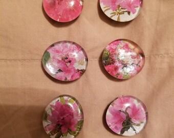 Floral themed glass gem magnets