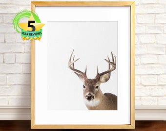 Deer Print, Deer Head and Antlers, Printable Wall Art Poster, Large, Digital Download, Woodlands Nursery Decor, Modern Minimalist