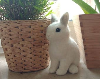 Sweet Dwarf rabbit, Bunny, Snow White, light grey, soft, natural, handmade with love, Easter Bunny, Easter, Easter, Easter Bunny