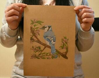 Blue Jay - Original Artwork