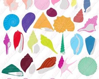 80% OFF SALE Seashells clipart, ocean clipart, nautical clipart, beach clipart, digital clipart, watercolor clipart, sea clipart, summer