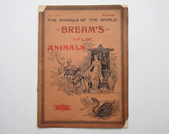 Antique 1896 Brehm's Life of Animals, Part 30-A, Illustrated, 1890's Booklet, Marquis & Company, The Cloven-Hoofed Animals: Ox, Oxen