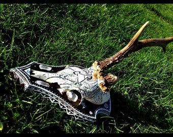 Air Skull, deer (real), Air element (Owlkemii)