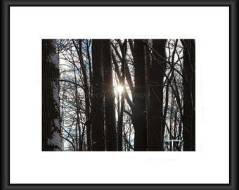 Before the Dusk, Photography, Free Shipping, Wall Art, Home Design, Print, Framed Print, Canvas Wrap, Canvas with Floating Frame, Nature Pic