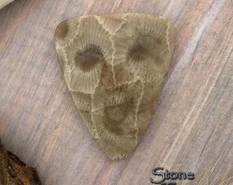 Handcrafted Lake Michigan Petoskey Stone Cabochon