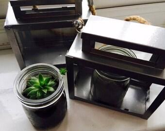 Indoor Mini Terranium for Cacti/Succulents.