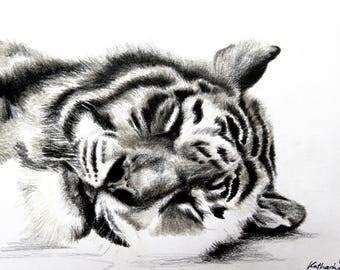 Tiger, drawing